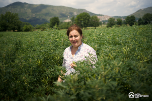 Anna Zeppetella Masseria del Sesto
